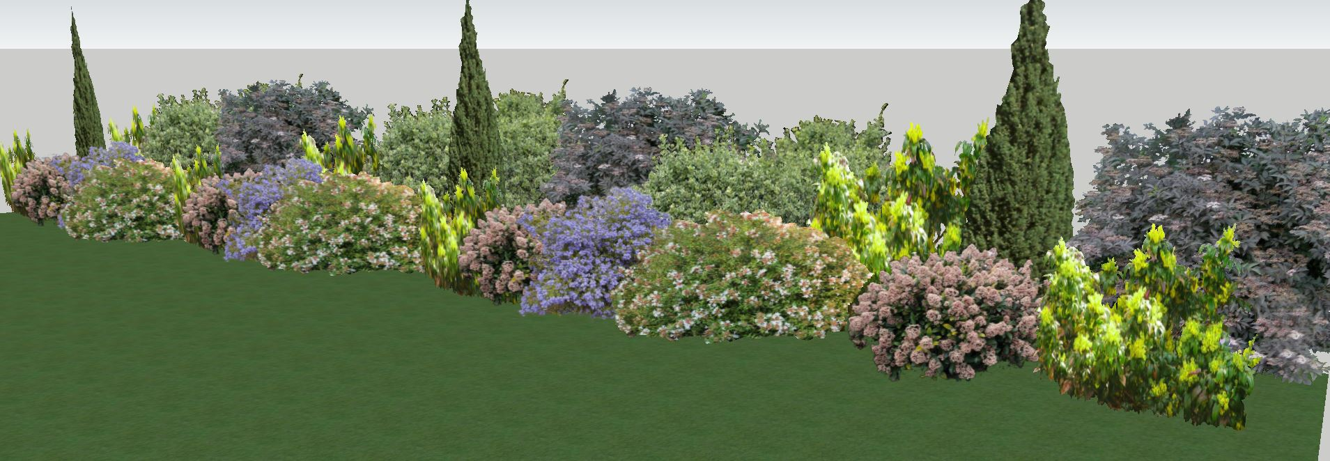 Plantations haies topiaires niwaki jardins and co - Haie champetre persistant ...